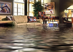 Flood and Water Damage Cleaning Services Scappoose, St Helens, Beaverton, OR